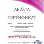 phoca_thumb_l_aravia